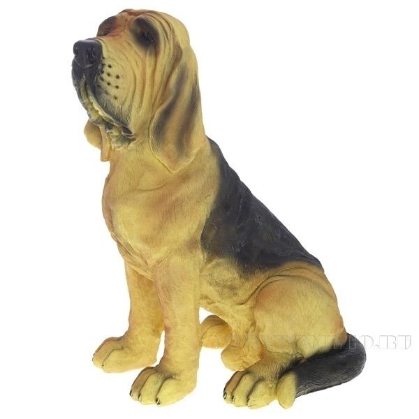 Фигура декоративная садовая Собака Бландхаунд L21W27H37 см оптом