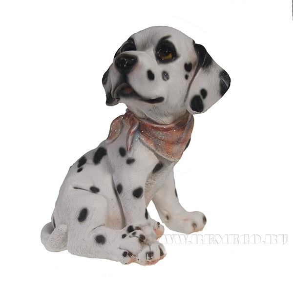 Фигура декоративная Щенок Далматинец с косынкой L11W8H14см оптом