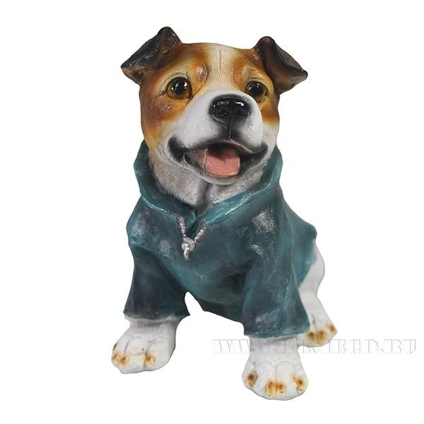 Фигура декоративная Щенок Джек рассел  терьер в  свитереL9W11H13см оптом