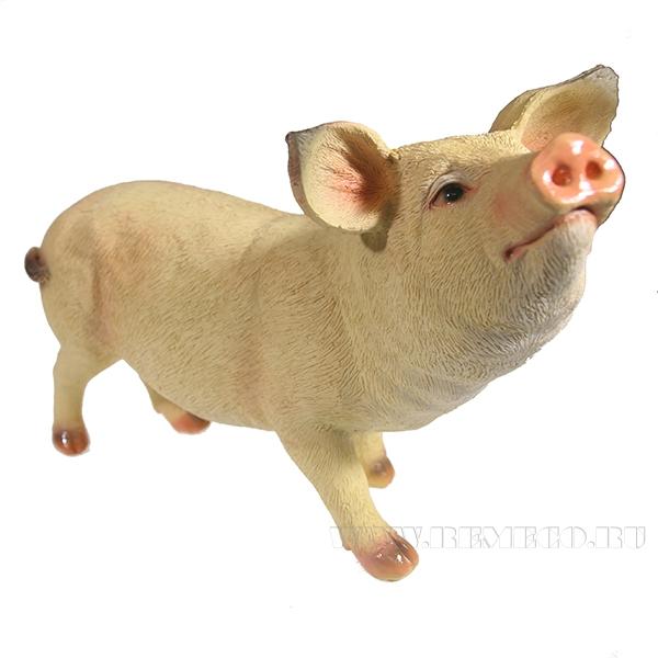 Фигура декоративная Свинка Шмося (вид №2) L27W12H19 оптом