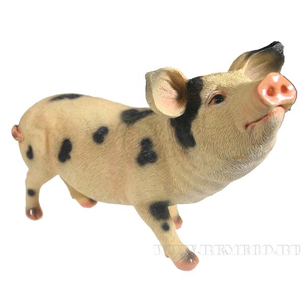 Фигура декоративная Свинка Шмося (вид №3) L27W12H19 оптом