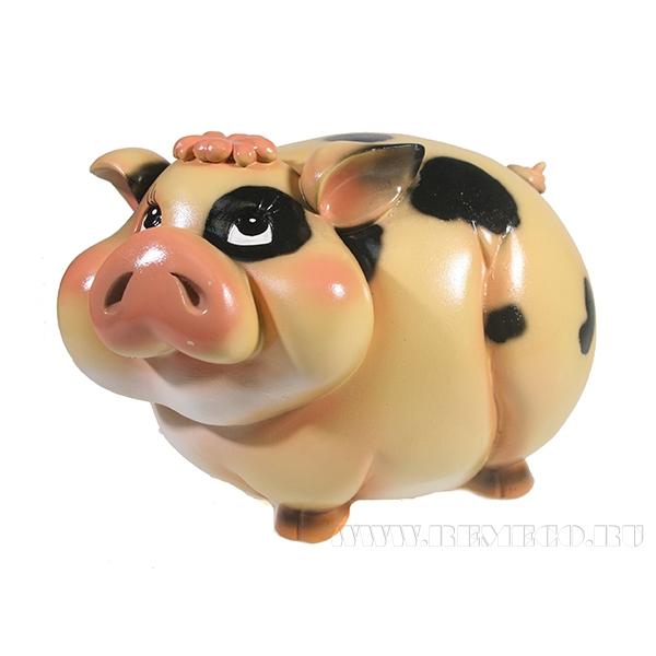 Копилка Свинка Мила (вид №2)L22W12H14 оптом