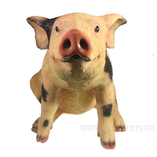 Фигура декоративная Свинка СняпкаL50W23H32 оптом