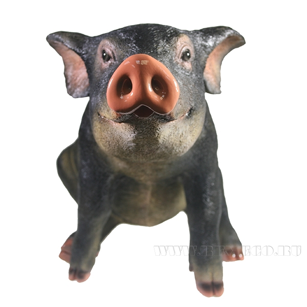 Фигура декоративная Свинка Сняпка L50W23H32 оптом