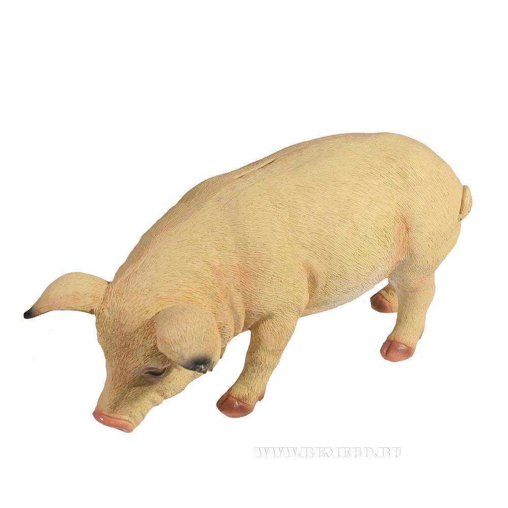 Копилка Свинка Фуся L29.5W12H13 (светлая) оптом