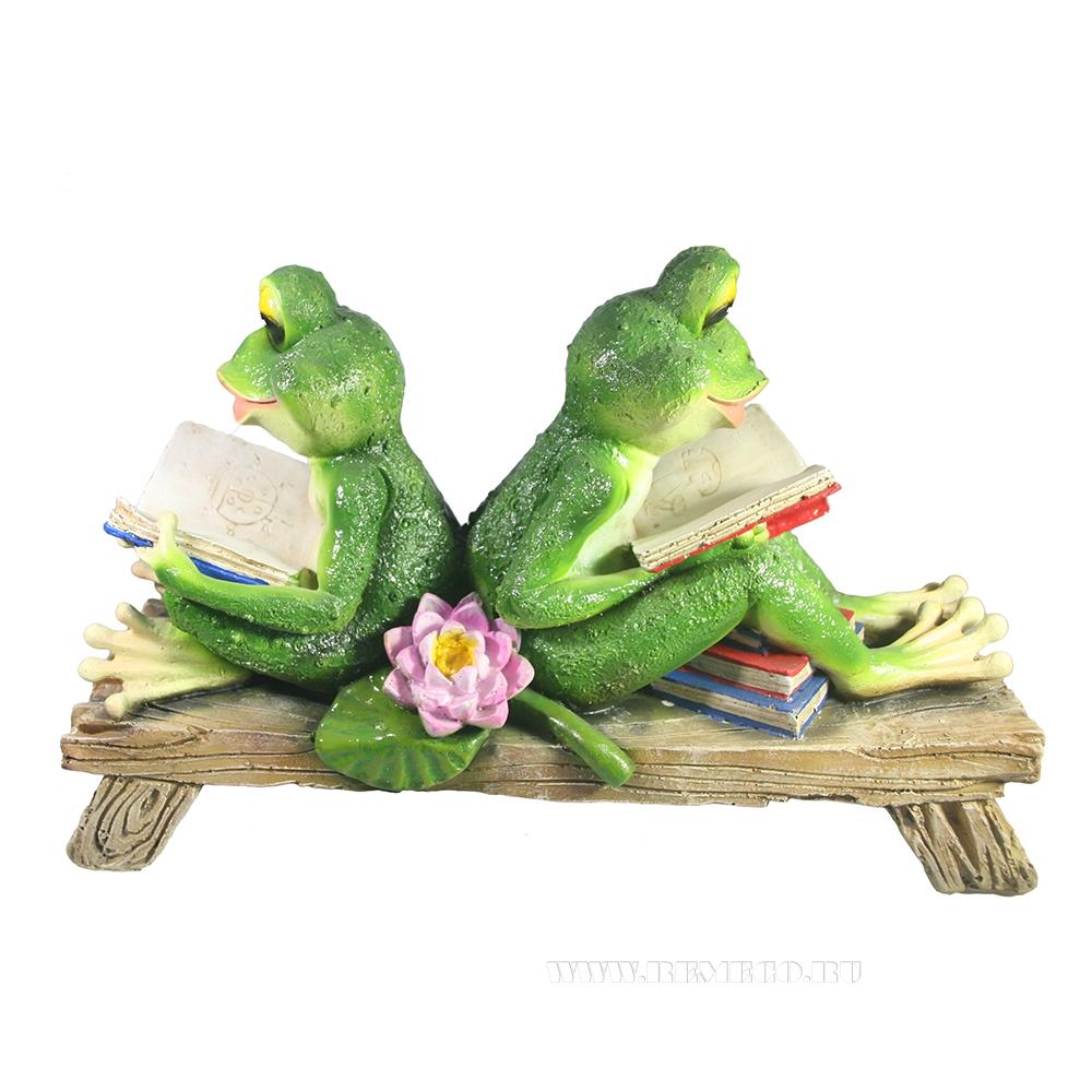 Фигура декоративная Две лягушки с книжками на лавке оптом