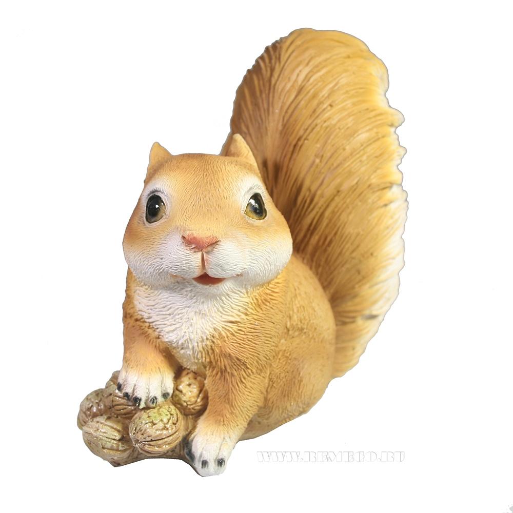 Фигура декоративная Белочка с орешками L17W8,5H16 оптом