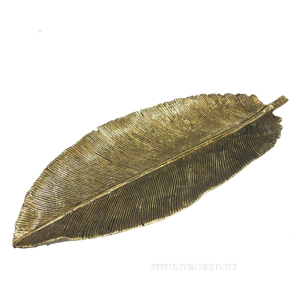 Изделие декоративное Перо (золото) L34W12L3 см оптом