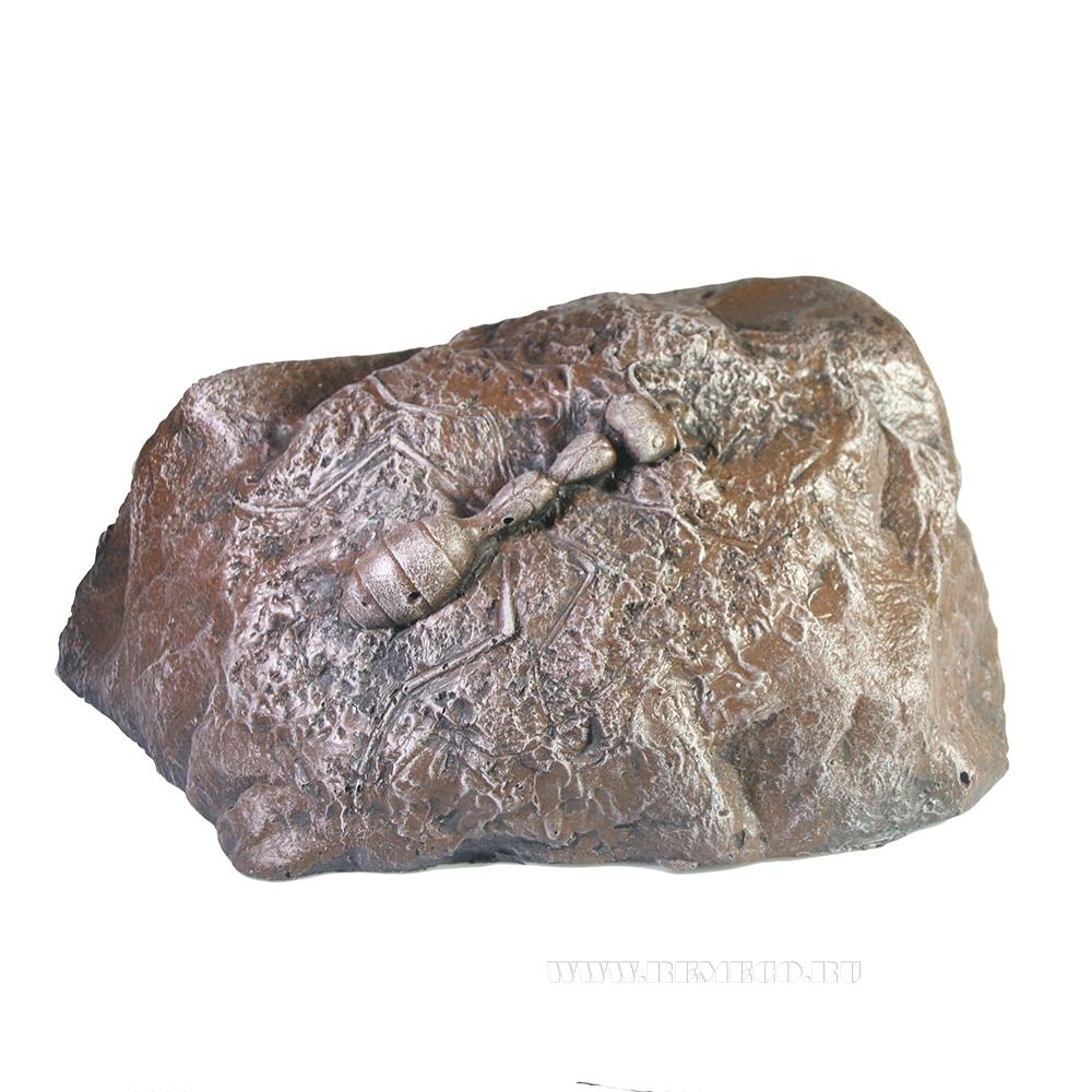 Камень малый с муравьем, D 36 см оптом