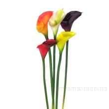 Цветок искусственный Калла (силиконовое покрытие), 2в., H70 см