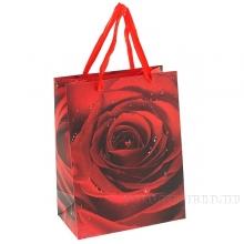 Пакет подарочный (бумага, плотность 210г/м2, блок 12шт), L18 W10 H23 см