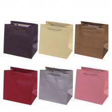 Пакет подарочный (бумага, плотность 210г/м2, блок 12 шт), 20х13,5  H20 см, 2в.