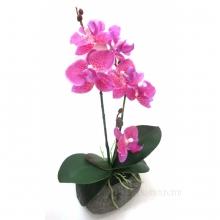 Цветочная композиция Орхидея, L11 W10 H30 см