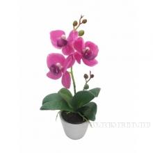 Цветочная композиция Орхидея, L7 W7 H25 см
