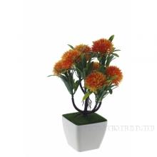 Цветочная композиция Астры 7,5х7,5х25см 6 видов