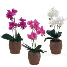Цветочная композиция Орхидея, L11,5 W11,5 H43 см, 3в.