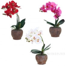 Цветочная композиция Орхидея, L15 W15 H42 см, 4в.