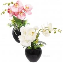 Цветочная композиция Орхидея, 10х10х35см, 2вида