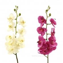 Орхидея, 100см, 4вида