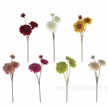 Ветки, цветы
